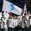 """Coreea de Sud si Coreea de Nord vor sa defileze sub steagul """"unit"""" unic la Jocurile Olimpice"""