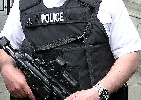 Politia înarmata