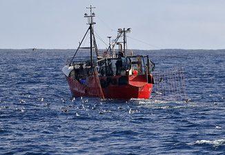 Vas de pescuit comercial